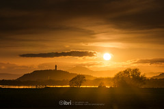Cambus - 10 May 2018 - 54.jpg (ibriphotos) Tags: dogwalk onetree warm wallacemonument river benledi cambus riverforth sunset summer spring aroundtheforth clackmannanshire evening goldenhour sky sunsets