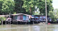 """Bangkok: Khlong life (Ali Bentley) Tags: bangkok thailand southeastasia klong khlong """"longtail boat"""""""