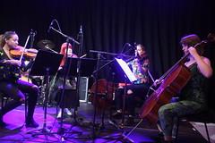 String Ting  (2018) 01 (KM's Live Music shots) Tags: jazz greatbritain poland stringting ligetiinwonderland fridaytonic southbankcentre