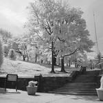 Ft. Greene Park, BK thumbnail