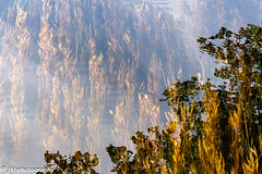Snake in the Bog - Connamara National Park, Ireland - Summer 2018-141.jpg (jbernstein899) Tags: connemaranationalpark reflections ireland water bog