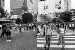 © Zoltan Papdi 2018-3724 (Papdi Zoltan Silvester) Tags: japon japan tokyo réel rue vie gens humain voyage journalisme real street life people human trip journalism ruedelaville piéton ville foule trottoir passageclouté chaussée groupe urbain citystreet pedestrian city crowd sidewalk zebracrossing pavement group urban