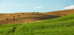 Tuscany during golden hour - 1 (marcovannotti) Tags: nature landscape goldenhour italia sky green blue broun