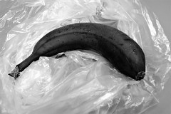 Now, take a look at the ancient ancestor of banana. (BarbaraBonanno BNNRRB) Tags: blackbanana black bw food lebensmittel essen nourriture manger питание есть τροφή φάω 食べ物 食べます blackandwhite
