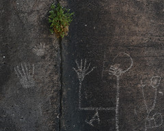Polydactyl Petroglyph Panel (Gentilcore) Tags: ancient archaeologicaldistrict art basinandrangenationalmonument bureauoflandmanagement conservation desert district ely greatbasin indian landscape lincolncounty nationalregisterofhistoricplaces nativeamerican nevada old park patina petroglyphs rock seamanrange springs system visit volcanic weepahspringwildernessarea whiterivernarrows lands monument national place public tuff weepah