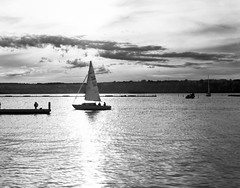 Sail away sweet sister (Brian Copeland Photography) Tags: ilforddeltaprofessional100 selfdeveloped sunset northamerica hamiltonharbour blackandwhitefilm 4x5 film photogear filter sailboat orangefilter largeformat dilutionb boat ilford transportation hamilton ontario canada kodakhc110 blackandwhite marine hamiltonwaterfronttrail ilfordfilm bw blackwhite dusk evening lensfilter monochrome nightfall sundown twilight ca