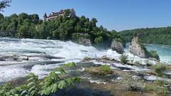 Rheinfall, 30.5.18 (ritsch48) Tags: rheinfall rhein schlosslaufen neuhausen