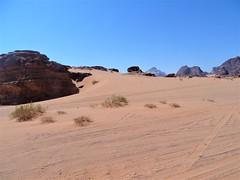 Wadi Rum (17) (pensivelaw1) Tags: jordan desert crags wadirum trains middleeast asia rockformations aqaba