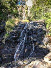 Goomoolara Falls ([S u m m i t] s c a p e) Tags: goomoolarafalls springbrooknationalpark hiking trailrunning springbrook queensland australia