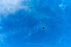Skylne Trip to 金海沙滩 Kites 15 (C & R Driver-Burgess) Tags: beach sea water ocean coast ripples surf kiteboard kitesurf cloud sky blue red green hills horizon spectators