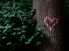 kiel_P7100965 (ghoermann) Tags: deu geo:lat=5434590128 geo:lon=1014218330 geotagged germany kiel schleswigholstein wik love heart