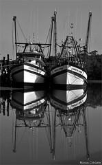 Embarcações Foto Marcus Cabaleiro Site: https://marcuscabaleirophoto.wixsite.com/photos Blog: http://marcuscabaleiro.blogspot.com.br/ #muscabaleiro #guarujá #sp #brasil #embarcação #reflexo #mono #céu #fotografia #arte #brazil #monocolor #barcos #photogra (marcuscabaleiro4) Tags: brazil brasil céu contraste arte mono nikon olhar barcos white blackandwhite bw photographer espelho sp embarcação muscabaleiro monocolor black reflexo fotografia pb espelhodagua guarujá monochrome tonsdecinza photography