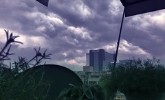 Serenity has no Language (RahulChandra23) Tags: followme explore street westindia mumbai landscape likes famous discover popular plants dusk rains monsoons northindia india newdelhi delhi clouds monsoon iphone