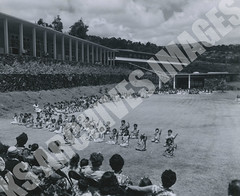928- 5556 (Kamehameha Schools Archives) Tags: kamehameha archives ksg ksb ks oahu kapalama luryier pop diamond 1955 1956 kindergarten kspd lei day