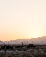_U7A1231 (Eric.Burniche) Tags: palmsprings joshuatree nationalparks desert nationalpark joshuatreenational california