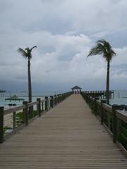 IMG_4659 (Man O' World) Tags: baha mar nassau bahamas beach turtle resort