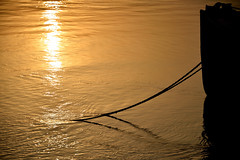 Anchorline (sanat_das) Tags: anchorline river afternoon golden simple boat silhouette hoogly kolkata babughat d800 28300mm