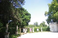 JLF17846 (jlfaurie) Tags: jardin garden bagatelle paris france francia parc parque 22072018 mpmdf jlfr jlfaurie mechas roseraie fleurs roses rosas