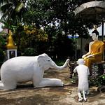 Wat Phrakeaw Dontao Suchadaram thumbnail