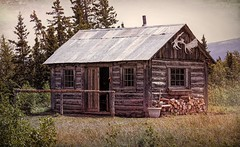 Far North Wilderness Cabin (JLS Photography - Alaska) Tags: cabin cabins cabinlife dwelling home logcabin jlsphotographyalaska wilderness farnorth summer house cottage grass tree wood roof sky field building