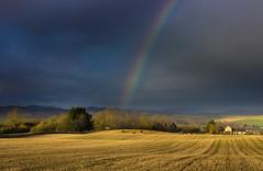 Highland rainbow (snowyturner) Tags: scotland inverness conon maryburgh rainbow fields light rain clouds trees farmland hills highland wetshower
