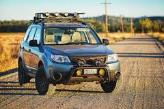 2012 Subaru Forester (softroadingthewest.com) Tags: sh forester subaru 2012 offroadlights hella blackmagic led halogen