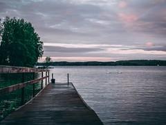 Sunset whit swan family (Sivakovin) Tags: olympus swan joutsenet joutsenperhe laituri lightroom nightphoto niihama sunset swanfamily