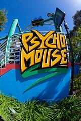Psycho Mouse (ezeiza) Tags: california ca santaclara santa clara greatamerica paramountsgreatamerica pga themepark amusementpark rollercoaster madmouse wildmouse psychomouse arrowdynamics cedarfair californiasgreatamerica californias