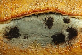 Sister Mui Bread