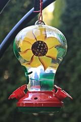Humming Bird Feeder (hbickel) Tags: hummingbird feeder birdfeeder colorful canont6i canon photoaday pad outdoors