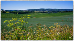 Utsikt fra Henivegen (Krogen) Tags: norge norway norwegen akershus romerike gjerdrum heni landscape landskap krogen fujifilmx100