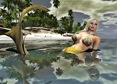 Mermaid (Sweet Angel Plumcake) Tags: second life sl mermaid sexy