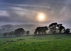 An Evening Stroll (jo92photos) Tags: 15challengeswinner