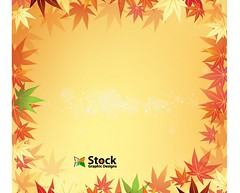 Free Autumn Leaf Background Vector (stockgraphicdesigns) Tags: autumn background botanical botany color colour deciduous decoration decorative eco ecology environment environmental fall foliage forest fresh freshness garden green leaf leaves lush maple natural nature orange organic plant spring summer tree