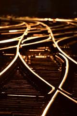 Eisenbahn bis die Schienen glühn (Thomas Neuhaus) Tags: gleis weiche schwelle schiene schraube holz eisenbah bahn transport infrastruktur bern stadt öv schweiz