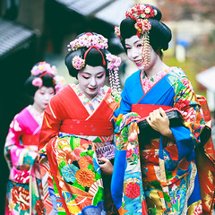 Traditional geishas are walking on the street (Patrick Foto ;)) Tags: apprentice asia beautiful beauty business celebration clothing color colorful concept costume cultural culture cute design dress event fashion female festival geisha gion girl girls happiness japan japanese kimono kyoto lady lifestyle maiko makeup november osaka people portrait pretty style tokyo tour tourism tourist tradition traditional travel vintage woman women young kyōtoshi kyōtofu jp
