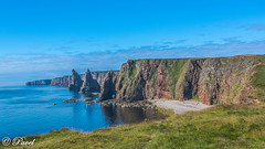 Scotland Trip (pavel's vision) Tags: scotland scottish roadtrip britain travel nikon hdr landscape animals trip highlands countryside nc500