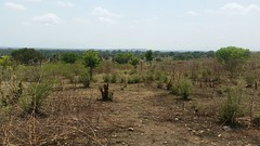 IMG-20180316-WA0010 (FAO Forestry) Tags: fao un uganda refugees unhcr world bank environment energy south sudan woodfuel forestry