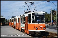 219-159-1995-10-03-1-Tierpark (steffenhege) Tags: berlin bvg strasenbahn streetcar tram tramway kt4d ckd 219159 9159
