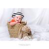 In the basket | Ethan (dominikfoto) Tags: lapin rabbit baby bébé love ethan portrait fusina fusinadominik