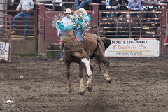 Flying (allentimothy1947) Tags: 2018 duncanmills bucking competition cowboy horses riders rodeo russianriverrodeo duncans mill bulls russian river hat chaps riding bronco boots jeans