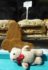 2018 Penzance 7-1Wed St Ives DT1 (g crawford) Tags: dangerted ted teddy teds dt stives cornwall cornish gingerbread men