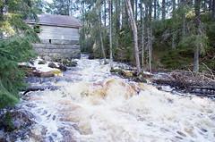 Kuohuvainen III (Jorma_M) Tags: mill mylly koski rapids cascade creek kuohuvainen