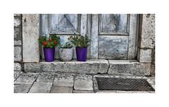 3 (CJS*64) Tags: cjs64 panasonic lx100 panasoniclx100 croatia trogir colours door pots plants welcome 3 three doorstep tavel traveling
