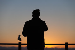 Coffee and a view (Mikey Down Under) Tags: australia australian coast coffs cold dawn daybreak fence headland lookout man northcoast northern nsw ocean orange pacific post rail seagull silhouette silhouetted standing sunrise watching woolgoolga