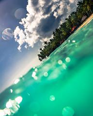 Isla Saona (Ibañez Matias) Tags: isla saona republica dominicana beach