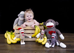 (Andrew d'Entremont) Tags: boy monkey monckeys sock wooden crate banana bananas baby