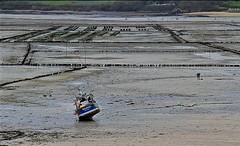 Le Belouga - Carantec (hervétherry) Tags: france bretagne brittany breizh finistère pennarbed carantec canon eos 7d efs 18200 baie morlaix marée basse low tide rivière river bateau boat belouga