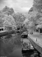 Canalside (peterphotographic) Tags: img0166sefexedwm canon a800 ©peterhall canalside riverlea riverlee eastlondon london england uk britain infrared canal narrowboat boat ship vessel towpath water nik silverefexpro2 blackandwhite blackwhitephotos bw monochrome tree