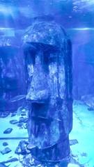 Feeling blue (jeffhob) Tags: moai feeling blue easter island sea life centre london westminster south bank summer holiday aquarium nokia8